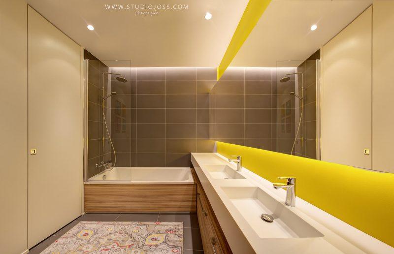 sdb de01 lyon 69006 guillaume coudert architecture d 39 int rieur. Black Bedroom Furniture Sets. Home Design Ideas